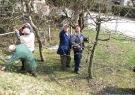 obrezovanje-andrejev-vrt10